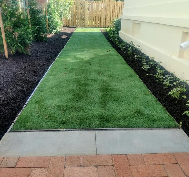 Fake Grass – Real Problem Solving: The Decision to use Artificial Turf